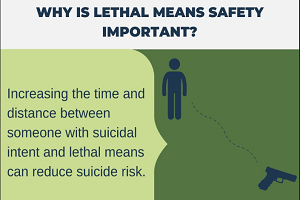 Rocky Mountain MIRECC for Veteran Suicide Prevention